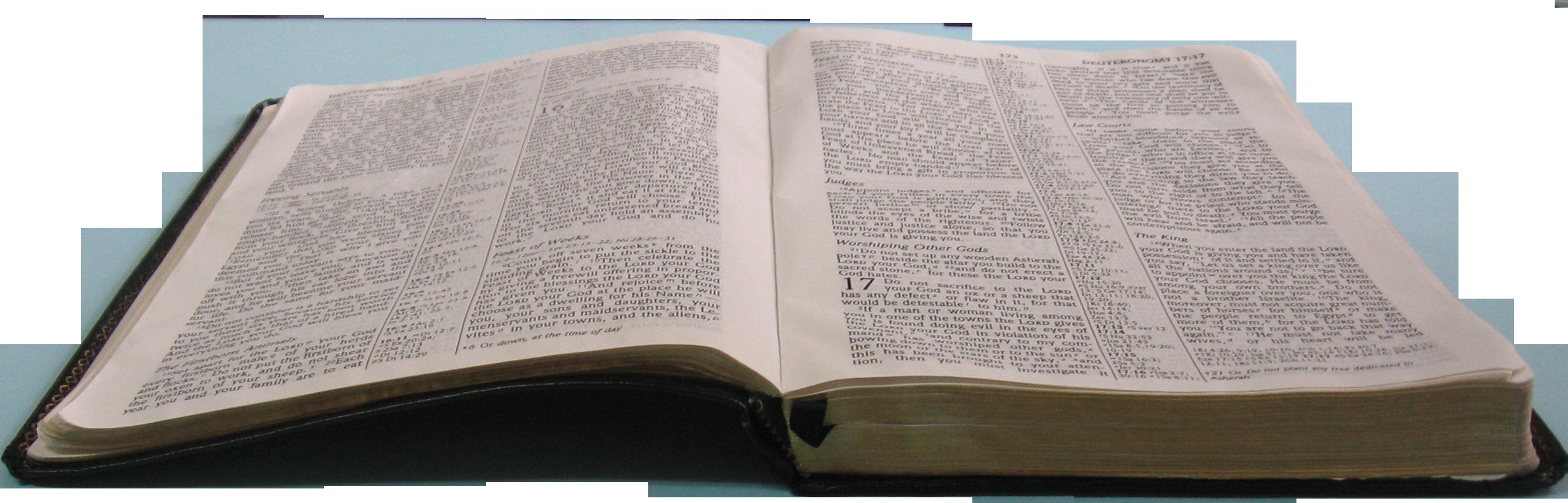 Bible Study Clipart & Clip Art Images #12355 ...