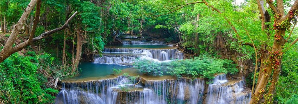 spring forest waterfall 01 feature sized